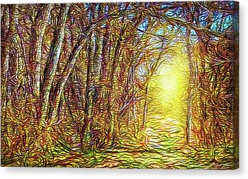 Silence Of A Forest Path Canvas Print by Joel Bruce Wallach