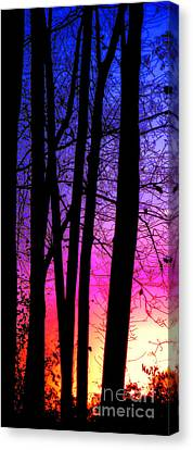 Silence Canvas Print by Olivier Le Queinec