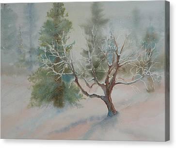 Silence Canvas Print by Ruth Kamenev