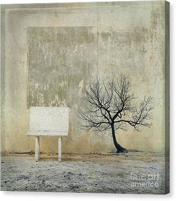Surrealistic Canvas Print - Silence To Chaos - 32b by Variance Collections