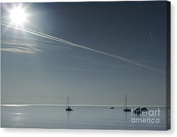 Silent Morning Canvas Print