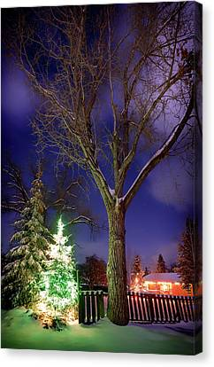 Canvas Print featuring the photograph Silent Night by Cat Connor