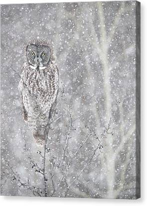 Canvas Print featuring the photograph Silent Snowfall Portrait by Everet Regal