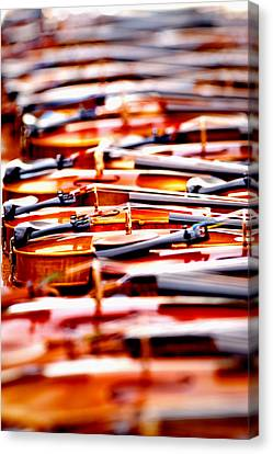 Silent Symphony Canvas Print