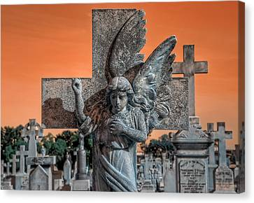 Silent Vigil Canvas Print by Wayne Sherriff