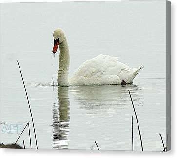 Canvas Print featuring the photograph Silent Water by Al Fritz