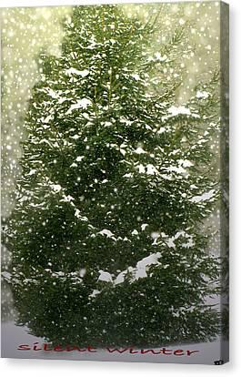 Silent Winter Canvas Print by Debra     Vatalaro
