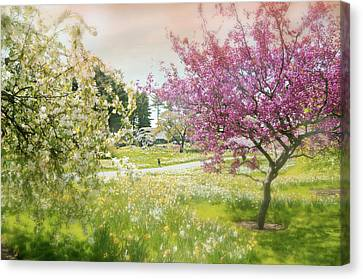 Canvas Print featuring the photograph Silent Wish You Make by Diana Angstadt