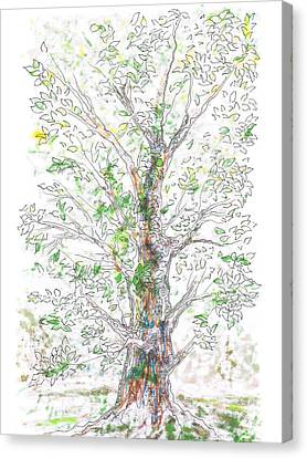 Silent Witness Canvas Print by Regina Valluzzi