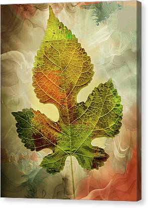 Silently Fall The Autumn Leaves-colorful Contemporary Art Canvas Print