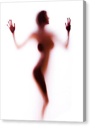 Silhouette 14 Canvas Print by Michael Fryd