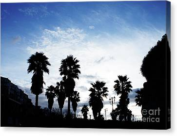 Silhouette In Tropea Canvas Print