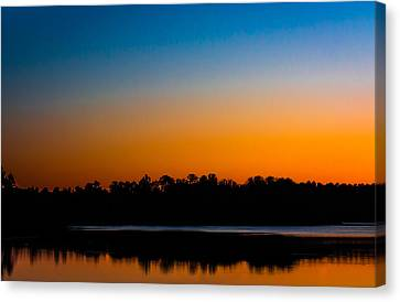 Silhouetted Trees At Sunset Canvas Print by Shelby  Young