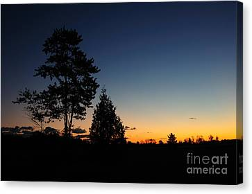 Silhouettes Canvas Print by Joe  Ng