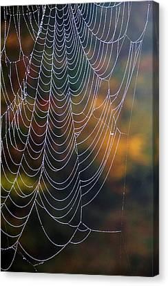 Silken Threads Canvas Print