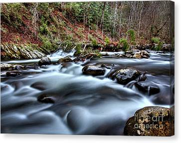 Canvas Print featuring the photograph Silky Smooth by Douglas Stucky