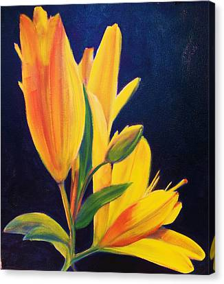 Silly Lily Canvas Print by Dana Redfern