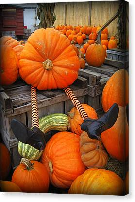 Silly Pumpkin Canvas Print by Suzanne DeGeorge