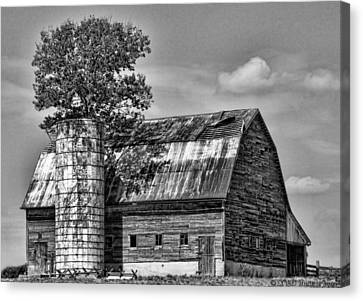 Silo Tree Black And White Canvas Print