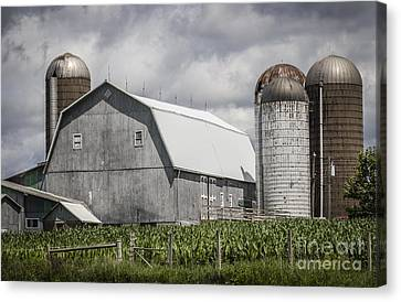 Silos Standing Canvas Print