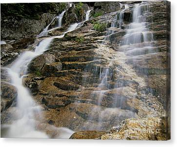 Silver Cascades - Crawford Notch New Hampshire Canvas Print by Erin Paul Donovan
