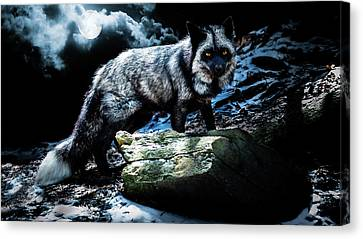 Tracy Munson Canvas Print - Silver Fox In Moonlight. by Tracy Munson