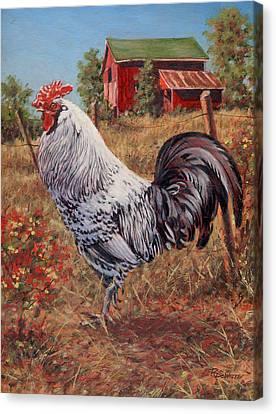 Silver Laced Rock Rooster Canvas Print by Richard De Wolfe