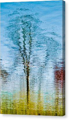 Silver Lake Tree Reflection Canvas Print by Michael Bessler