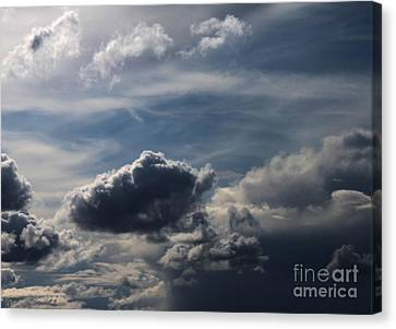 Canvas Print featuring the photograph Silver Lining by Erica Hanel