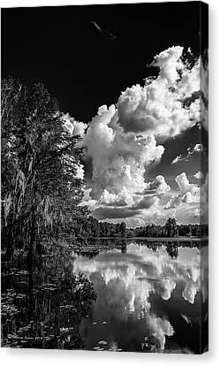 Southern States Canvas Print - Silver Linings by Marvin Spates