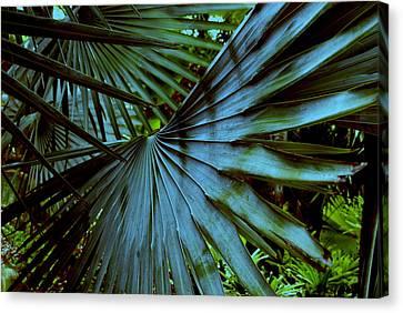 Silver Palm Leaf Canvas Print by Susanne Van Hulst