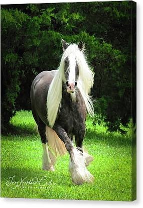 Gypsy Cob Canvas Print - Silver Reign As Marilyn Monroe by Terry Kirkland Cook