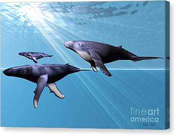 Whale Canvas Print - Silver Sea by Corey Ford