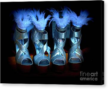 Silver Slippers Canvas Print