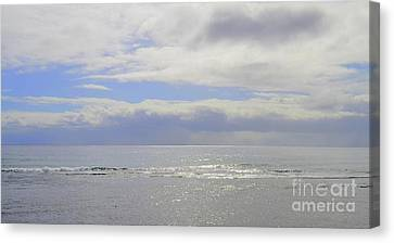 Canvas Print - Silver Slivers Of Sea by Mary Deal