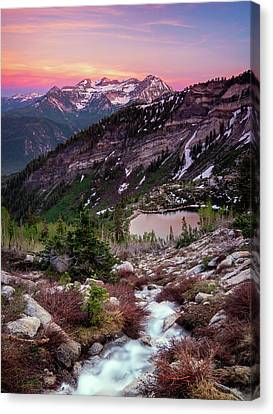 Silver Stream Canvas Print by Johnny Adolphson