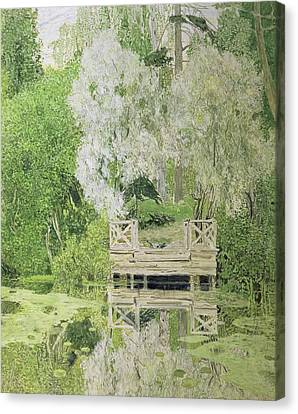 Silver White Willow Canvas Print