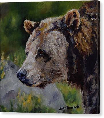 Silvertip Canvas Print by Lori Brackett