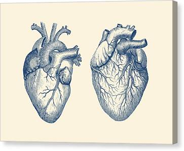 Simple Human Heart - Dual View - Vintage Anatomy Poster Canvas Print