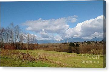 Canvas Print featuring the photograph Simple Landscape by Bill Thomson
