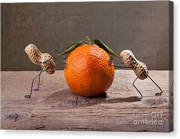 Odd Canvas Print - Simple Things - Antagonism by Nailia Schwarz