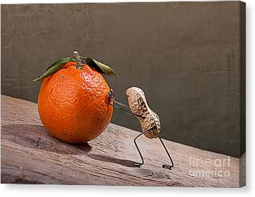 Simple Things - Sisyphos 01 Canvas Print by Nailia Schwarz