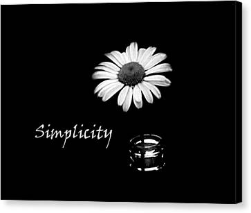 Simplicity Daisy Canvas Print by Barbara St Jean