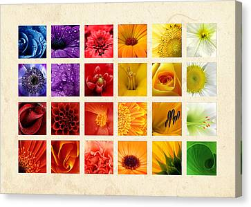 Simply Flowers Canvas Print