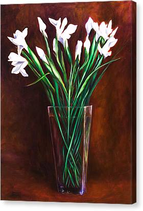 Simply Iris Canvas Print by Shannon Grissom