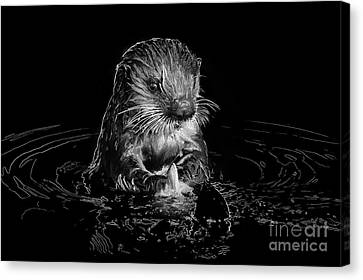 Simply Otter Canvas Print