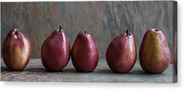 Simply Pears Canvas Print by Maggie Terlecki