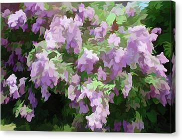 Simply Soft Lilac Bushes Canvas Print