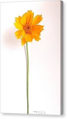Simply Sunny Canvas Print by Fred Wilson