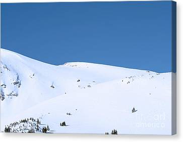 Canvas Print featuring the photograph Simply Winter by Juli Scalzi